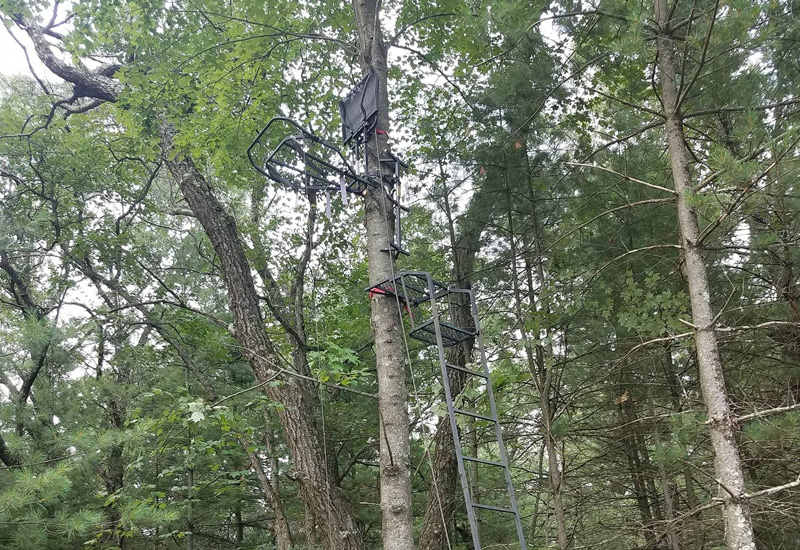 Treestand Therapy 8/21/18